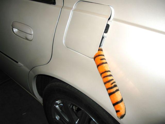 Tiger in tank.JPG